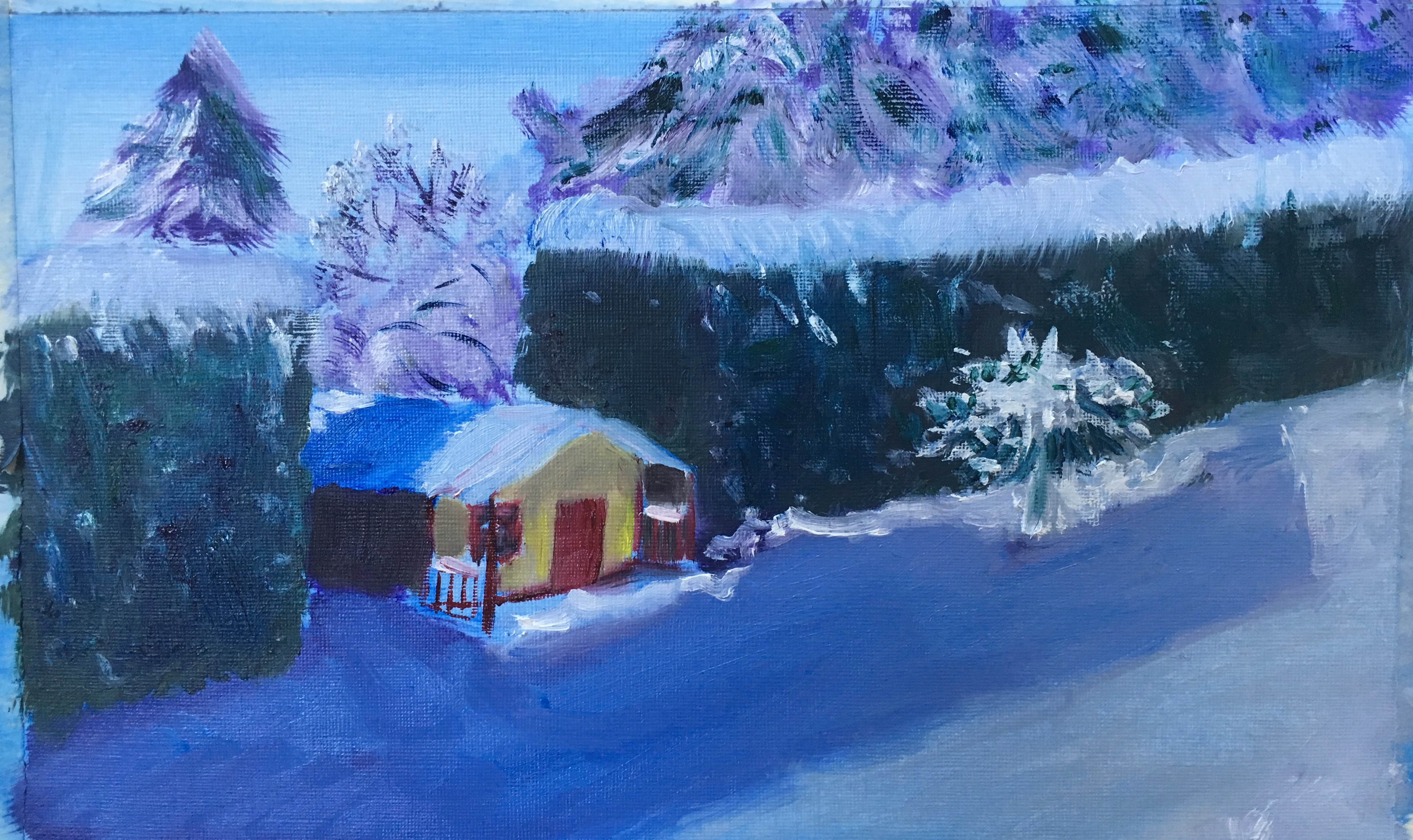 Wendy house in winter